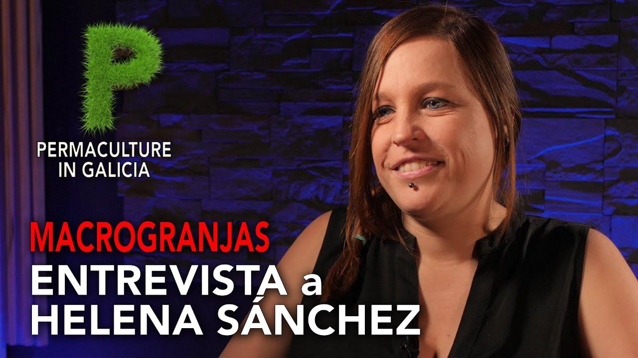 Macrogranjas   Entrevista Helena Sánchez (Rhizobium)   4K UHD   Permacultura en Galicia