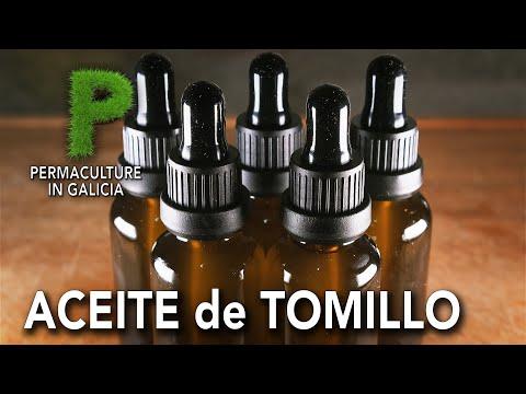 Como hacer aceite de tomillo casero | Permacultura en Galicia